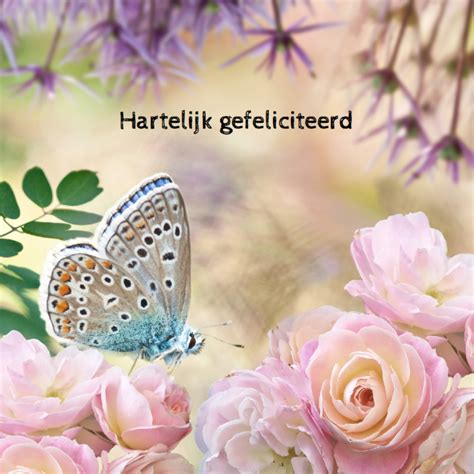zus van karin bloemen felicitatie met rozen en vlinder verjaardagskaarten