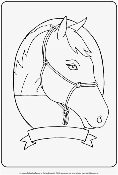 educational horse coloring pages 503 best images about kids fun educational on