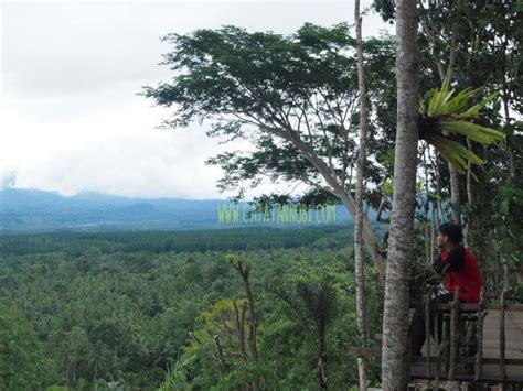 green gumuk candi songgon banyuwangi wisata alam