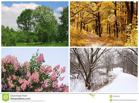 imagenes de invierno y otoño cuatro estaciones sueltan verano oto 241 o invierno imagen