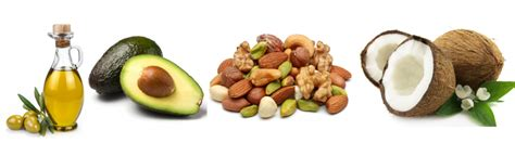 healthy fats pictures best 6 foods to help you transition into a plant based