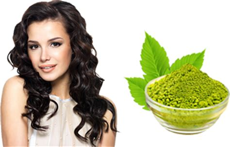 Harga Purbasari Hair Color Henna naaz hair color black henna 6 sachet daftar harga