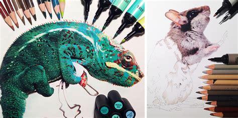 dibujos realistas materiales dibujos de animales realistas rodeados con los materiales