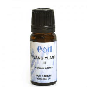 Minyak Aromatherapy Aromatherapy Ylang Ylang 35 Ml ylang ylang iii cananga odorata