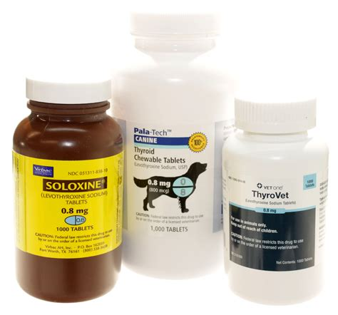 thyroid medication for dogs levothyroxine for dogs archives vetrxdirect blogvetrxdirect