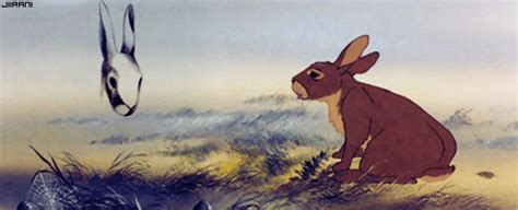 view topic fans of watership down open chicken