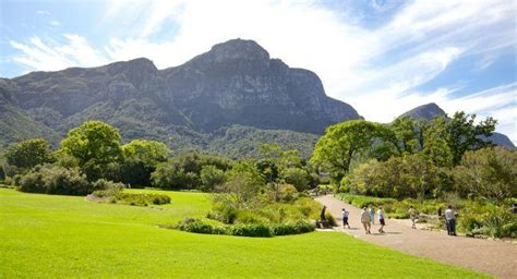 Kirstenbosch National Botanical Gardens Review Fodor S Cape Town Botanical Gardens
