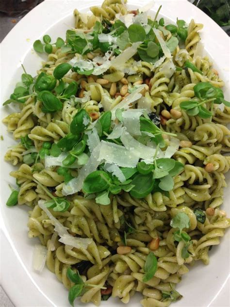 pasta salad pesto pesto pasta salad recipe dishmaps
