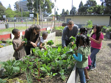 What Is A Community Garden by The Benefits Of Community Gardens Keep Oakland Beautiful