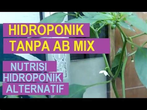 youtube membuat nutrisi hidroponik hidroponik tanpa nutrisi ab mix nutrisi hidroponik