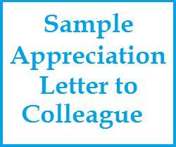 appreciation letter to colleague appreciation messages sle appreciation letter to