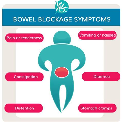 bowel obstruction home remedy 17 best images about small bowel obstruction on physical therapy