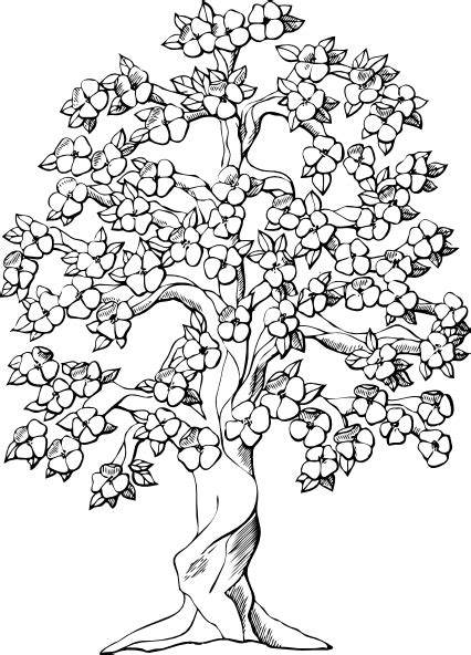 Flowering Tree Clip Art At Clker Com Vector Clip Art Black And White Tree Coloring Page