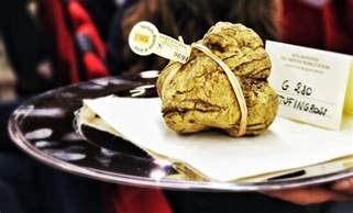 Rarest In The World Most Rarest And Expensive Foods In The World
