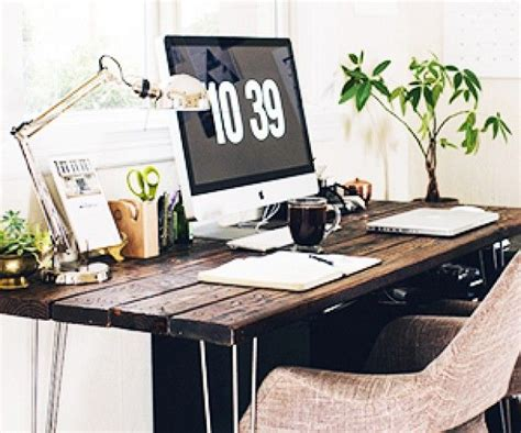 best low light office plants the best low light plants for your desk offices low