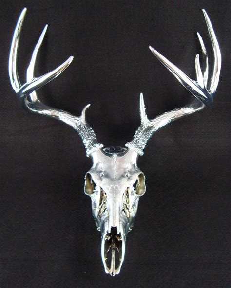 Decorated Deer Skull by 140 Best Images About Bling N Skulls On Horns