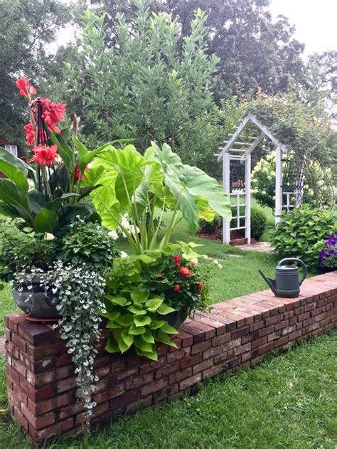 Arbor Garden Nursery S Ideas For The Remedial Gardener Me Emily A