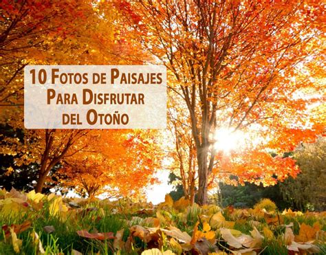 imagenes de paisajes otoño invierno 10 fotos de paisajes para disfrutar del oto 241 o coyotitos