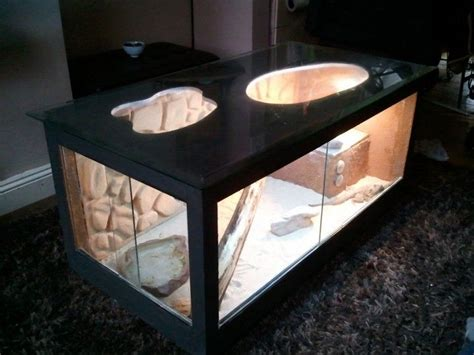 coffee table reptile terrarium bearded coffee table reptile forums bearded