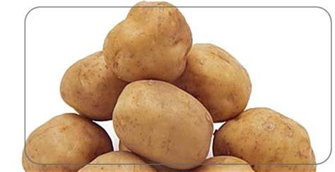 Potato Wiki by Potato Spud Wiki