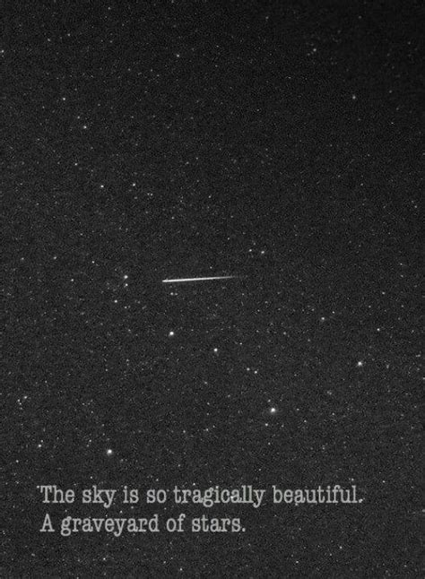 Tragically beautiful.... | Words quotes, Words, Life quotes