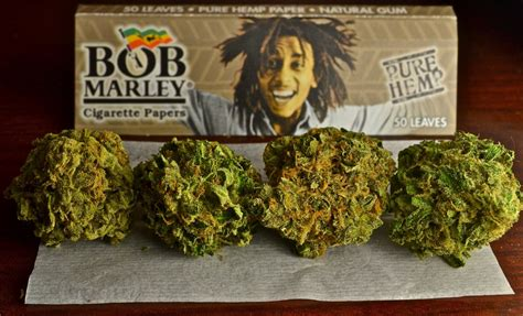 bob marley smoking weed quotes quotesgram