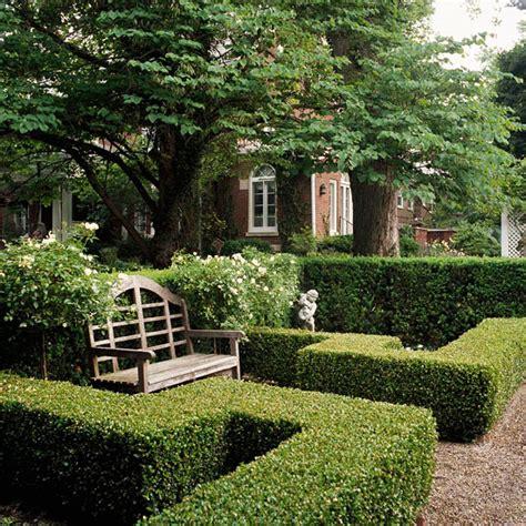 alley garden by fudge landscapes boxwoods best plants for hedges