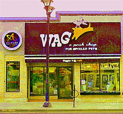 wag pet shop wag a posh pet store cafe for spoiled pets the glebe
