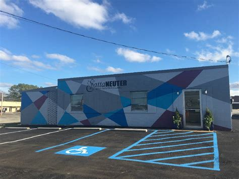 light street animal hospital prices low cost spay neuter clinic aims to reduce pet stray