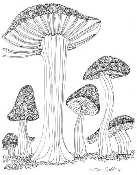 free doodle viewer 199 best images about colouring mushrooms