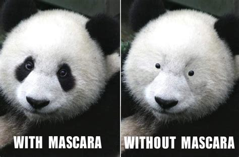 Panda Mascara Meme - black before and after makeup meme mugeek vidalondon