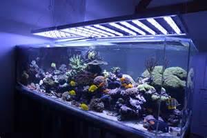 aquarium led le faq reponses aux questions frequentes sur les eclairages