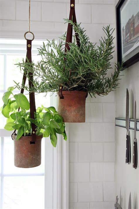 hanging herb gardens   love  display   home