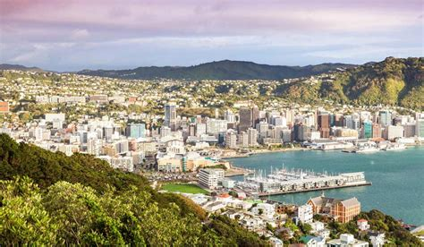 looksee wellington holiday in new zealand for free with just one small catch