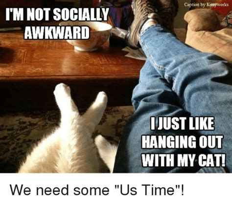 Awkward Cat Meme - 25 best memes about socially awkward socially awkward memes