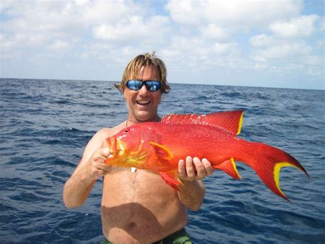 hooked  africa fishes  mozambique hooked  africa deep sea fishing charters cape town