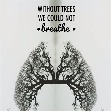 the tree could not put inspirational quotes oak tree quotesgram