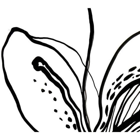 fiori in bianco e nero quadro moderno la bellezza dei fiori in bianco e nero
