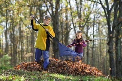 backyard cleanup spring clean up in the yard prepping for guests your