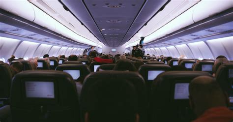 domestic airfare sits steady   year  lowestratesca