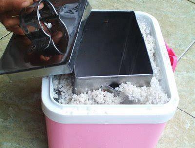 Box Es Keliling Gustaaf S Portable Freezer Box