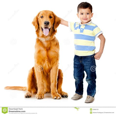 with puppies boy with a stock photos image 23965103