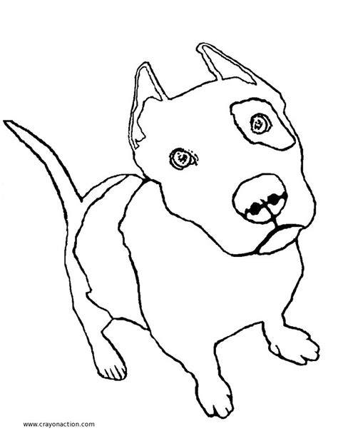 coloring pages pitbull puppies pit bull puppy coloring page crayon action coloring pages