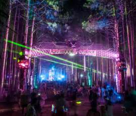 House Editor electric forest an ear ringing success 183 the badger herald