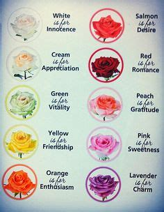 what do colors symbolize color meanings the secret language of flowers