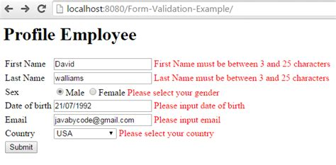 pattern validation in spring mvc spring mvc form validation annotation exle