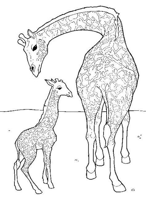 difficult giraffe coloring pages kids n fun de 45 ausmalbilder von giraffe