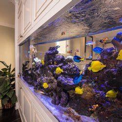 aquarium design san diego reliant aquarium design 41 photos 14 reviews