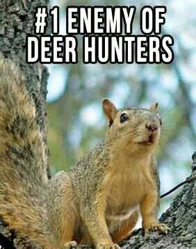 Lu Emergency Fdt 17 best images about memes on deer a deer and run disney princesses