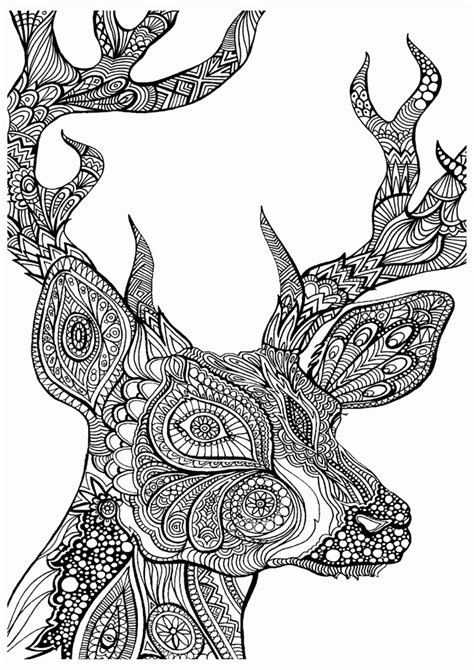 detailed animal coloring pages for adults coloring home